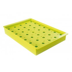 Pop Display Tray - Green