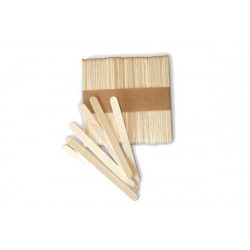 SET 100 PCS LITTLE WOOD STICK FOR EASYCREAM