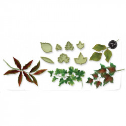 MIXED LEAVES SET TWO