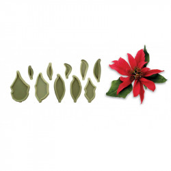 Poinsettiea Set Of 10