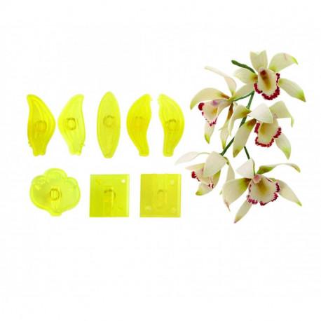 Medium Cymbidium Orchid - Set of 8