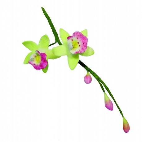 PME Cymbidium Orchid Flow/Petal cutter set/2 -SMA?Â??