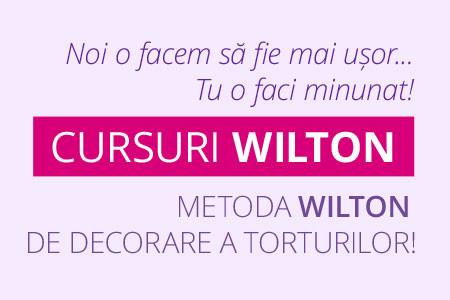 Cursurile de decorare torturi si deserturi dupa metoda Wilton din SUA